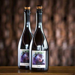 Zichovec Maliny 2020 Wild Ale